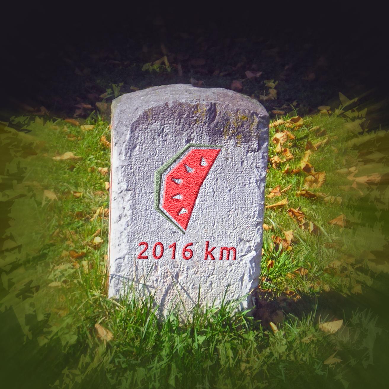 Mérföldkövek a 2016-os évre
